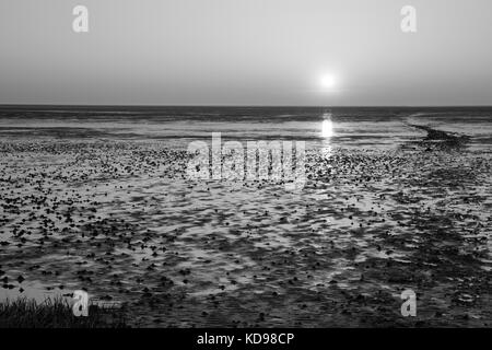 Sunset at the Lower saxon wadden sea national park, Lower saxony, Germany, Europe - Stock Photo