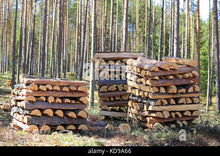 Three neat stacks of chopped and halved pine logs for firewood in spring forest on a beautiful day. - Stock Photo