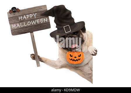 smiling pug puppy dog holding up wooden sign with happy halloween and wearing witch hat and pumpkin, isolated on - Stock Photo