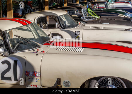 Jaguar E-Types in the paddock at the 2017 Goodwood Revival, Sussex, UK. Entrants in the Kinrara Trophy race. - Stock Photo