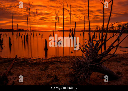 Incredible sunrise paints the water and a sky in beautiful golden color - Stock Photo