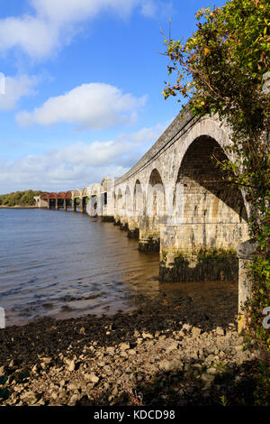 Stone and metal arches of the rail bridge that carries the Tamar Line over the tidal water of the River Tavy estuary - Stock Photo
