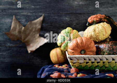 closeup of a basket with an assortment of different pumpkins and some halloween candies on a rustic table, against - Stock Photo