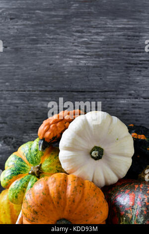 closeup of an assortment of different pumpkins against a gray rustic wooden background with a blank space on top - Stock Photo