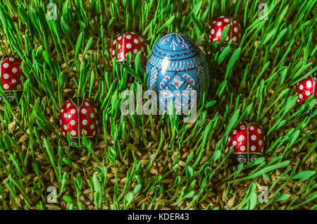 Painted wooden blue egg with chocolate ladybirds on sprouted barley - Stock Photo