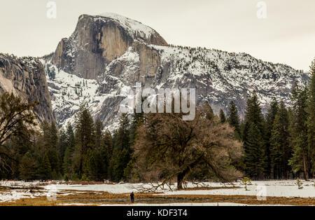 Half Dome, Yosemite National Park, California, America - Stock Photo