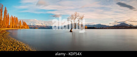 Lake Wanaka, Otago, South Island, New Zealand with the Willow 'Lonely' tree. Its the move famous lakes of the South - Stock Photo