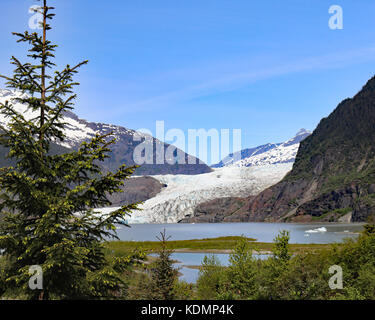 Mendenhall glacier and valley from the East glacier loop hiking trail - Stock Photo