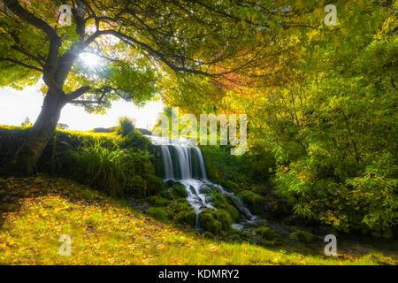 Littlebredy waterfall, Bridport, Dorset, England, United Kingdom - Stock Photo