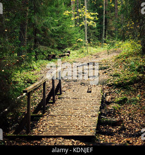 Small wooden bridge in the forest. Valaam island. Aged photo. Footpath in the woods. Toned image. Wooden pathway - Stock Photo
