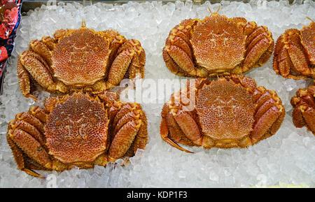 King crabs at Asaichi Market in the city of Hakodate, Hokkaido, Japan. - Stock Photo