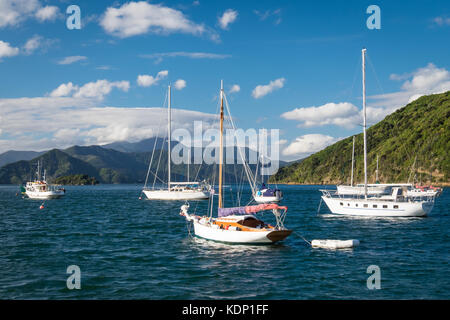 Pleasure boats moored in Picton in the Marlborough Sounds, New Zealand - Stock Photo