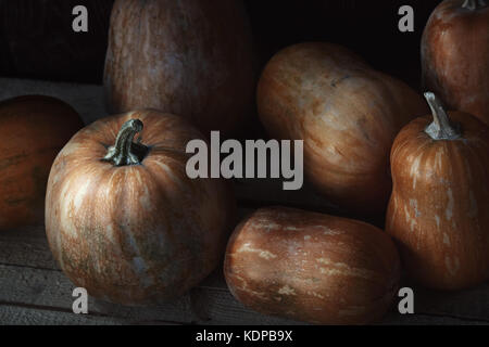 Group of pumpkins on a wooden table. High angle view - Stock Photo