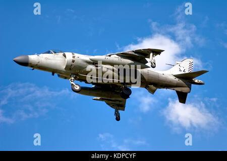 British Aerospace Sea Harrier F/A.2 - Stock Photo