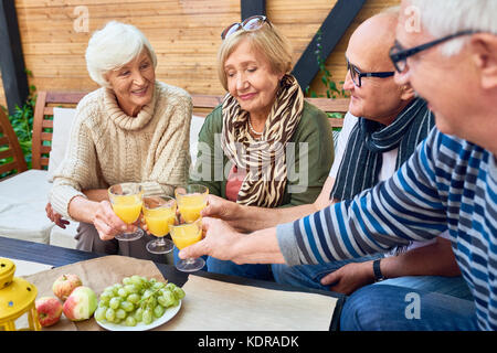 Group of Retired Friends Toasting at Lunch - Stock Photo