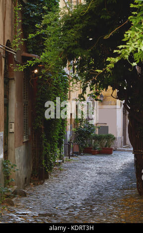 One of the streets in the Trastevere area in Rome, Italy without people - Stock Photo