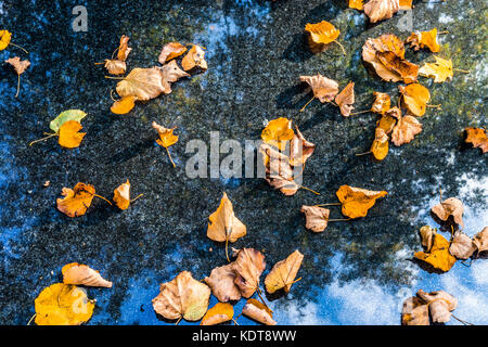 The sky with clouds is reflected in the marble monument on which the yellow leaves fall in the autumn. Can be used - Stock Photo