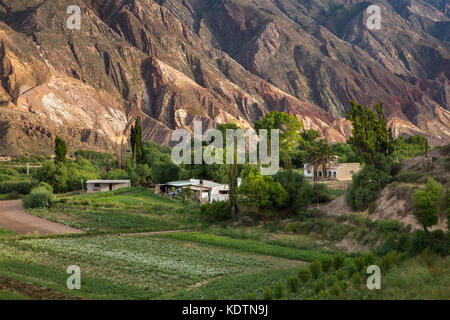 Farmland near Maimará, with the 'Painter's Palette' hills beyond, Quebrada de Humahuaca, Jujuy Province, Argentina - Stock Photo