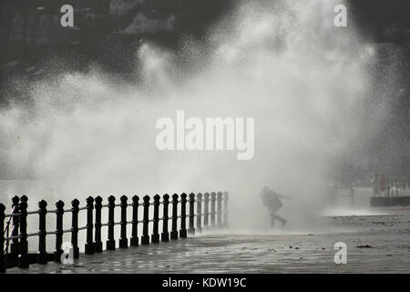 Penzance, Cornwall, UK. 16th October 2017.  UK Weather.   A thrill seeking woman gets a soaking as she stands in - Stock Photo