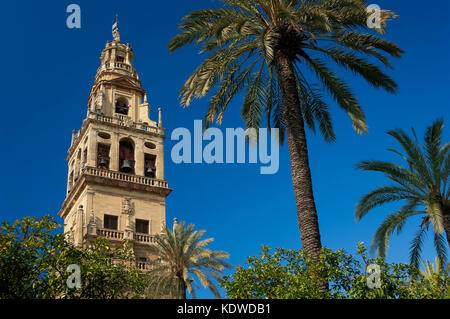 Cathedral, Old Arab mosque - minaret, Cordoba, Region of Andalusia, Spain, Europe - Stock Photo