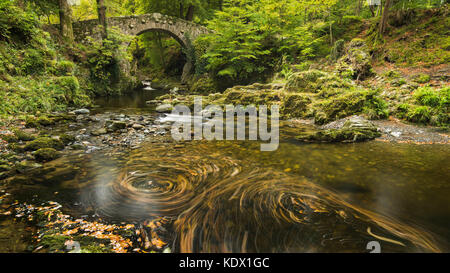 Foleys Bridge, Tollymore Forest