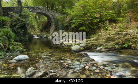 Foley's Bridge, Tollymore Forest