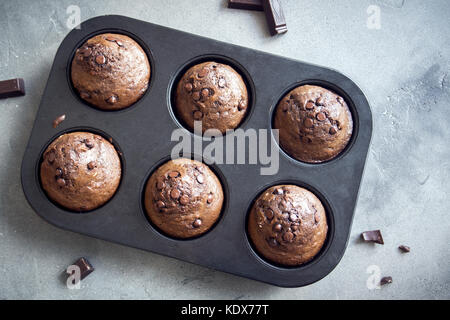 Chocolate Muffins with Chocolate Drops in bakeware. Homemade chocolate pastry for breakfast or dessert. - Stock Photo