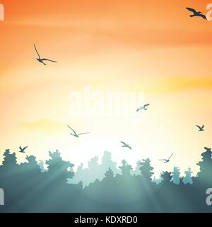 sunset in the forest, vector illustration - Stock Photo