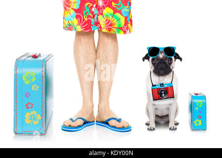 pug dog and owner ready to go on summer holidays vacation with luggage and bags , isolated on white background - Stock Photo