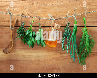 Various herbs hanging on shabby wooden background. Parsley ,sage,rosemary, fennel, shallot, thyme and essential - Stock Photo
