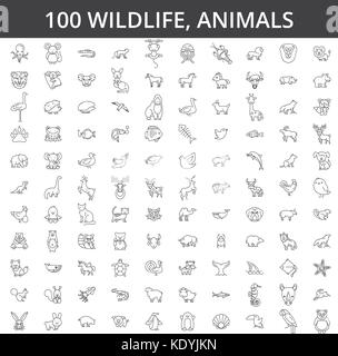 Wildlife african, sea, domestic, forest, zoo animals, cat, dog, wolf, fox, tiger, fish, bear, horse, dino, rhino, - Stock Photo