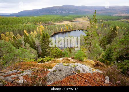 View from Farleitter Crag over the beautiful Cairngorm Landscape and Uath Lochan or Uath Lochans with Glen Feshie - Stock Photo