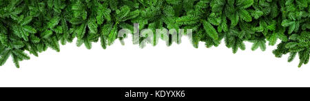 Wide Christmas border arranged with fresh fir branches isolated on white shaped as an arch, banner format - Stock Photo