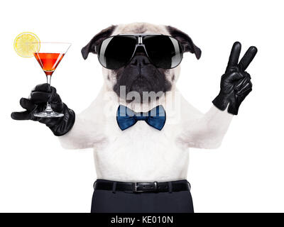 cool pug dog with martini glass and peace or victory fingers - Stock Photo