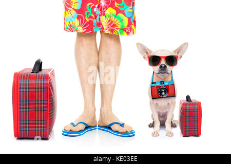 chihuahua dog and owner ready to go on summer holidays vacation with luggage and bags , isolated on white background - Stock Photo