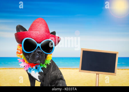 french bulldog dog at the beach with hat and sunglasses , relaxing summer vacation holidays, ocean shore as background, - Stock Photo
