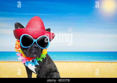 french bulldog dog at the beach with hat and sunglasses , relaxing summer vacation holidays, ocean shore as background - Stock Photo