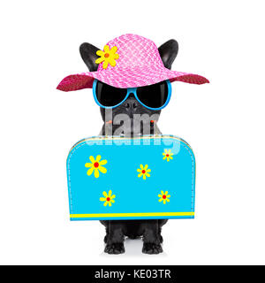 4f4b98aa808bbb ... background · french bulldog dog with luggage bag