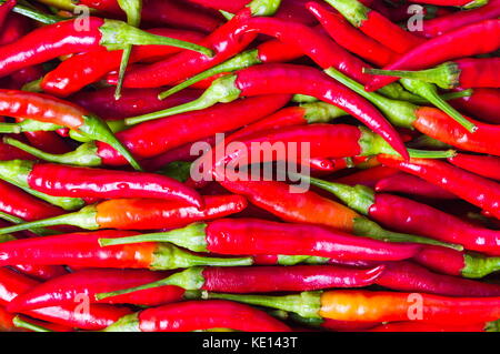 Thin red peppers on a pile background texture - Stock Photo