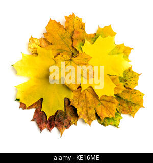Heap of colorful autumn fall maple leaf isolated on white background - Stock Photo