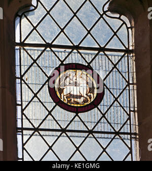 A 14th century roundel in a south aisle window in the parish church of St Peter at Ringland, Norfolk, England, United - Stock Photo
