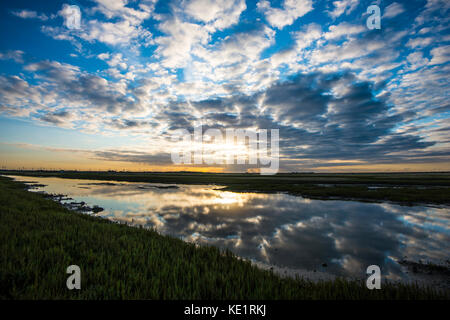 Rye Marshes. Rye Harbour Bird Reserve. Rye Harbour Nature Reserve. East Sussex, England. World class bird reserve - Stock Photo
