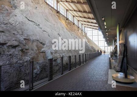 Dinosaur Quarry Exhibit, Dinosaur National Monument, Utah, USA - Stock Photo
