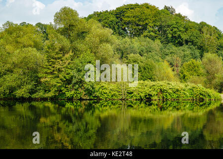 View to the green bank of the Ruhr, Essen - Stock Photo