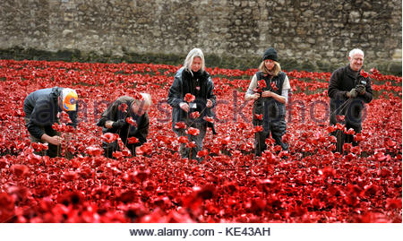 File photo dated 12/11/14 of volunteers removing poppies from the moat of the Tower of London, as work begins dismantling - Stock Photo