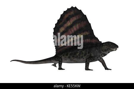 Dimetrodon dinosaur - 3D render - Stock Photo