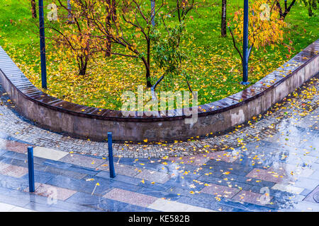 Yellow maple leaves on a wet granite pavement and on a green lawn grass of a modern park. Rainy fall weather. Nobody - Stock Photo