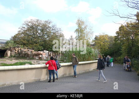 People visiting Rotterdam Blijdorp  zoo, The Netherlands. Visiting the black rhino enclosure. - Stock Photo