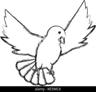White dove animal vector Dove and peace white bird isolated