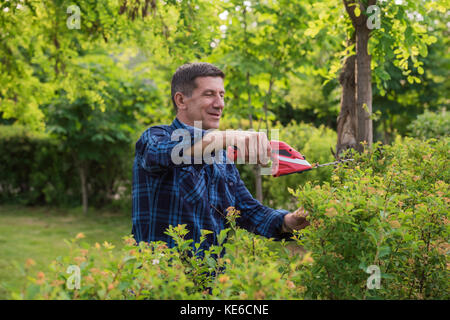 Retired but still healthy looking and smiling man is cutting and trimming the green hedge in the garden with the - Stock Photo